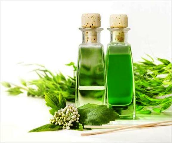 Tea Tree Oil reduces Bug Bites