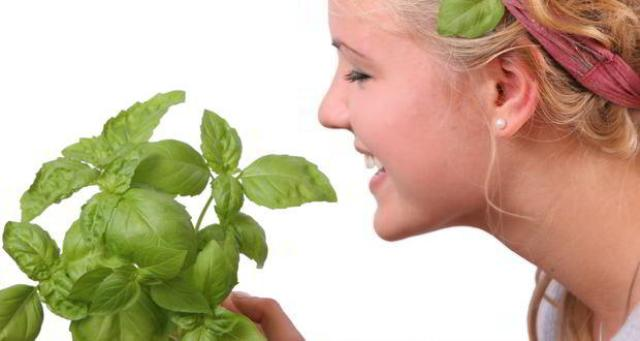 Tulsi For Skin Infection
