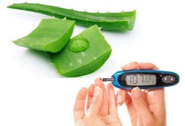 Aloe Vera Reduces Cholestrol and Diabetes Level