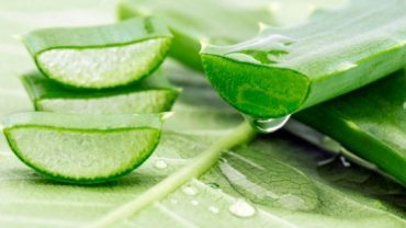 Aloe Vera Removes White Spots From The Skin