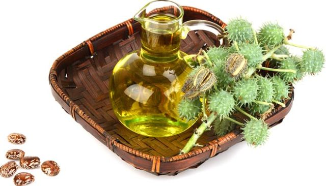 Castor Oil Removes Fungus