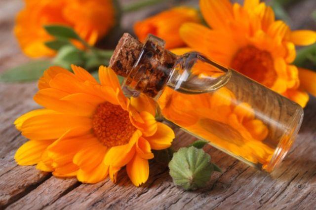 Calendula Oil For Skin Rashes