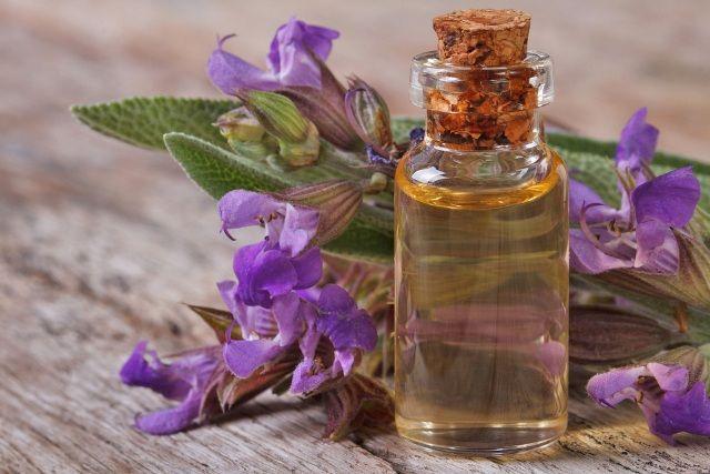 Rosemary Oil Removes Odour
