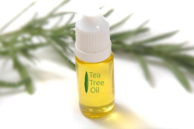 Tea Tree Oil Removes Fungus