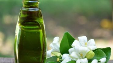 Bhringraj Oil Benefits